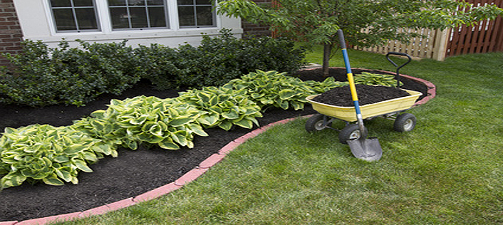 Rose of Sharon Landscaping - Lawn Care Cleveland Ohio Rose Of Sharon Landscaping 216-240-2220